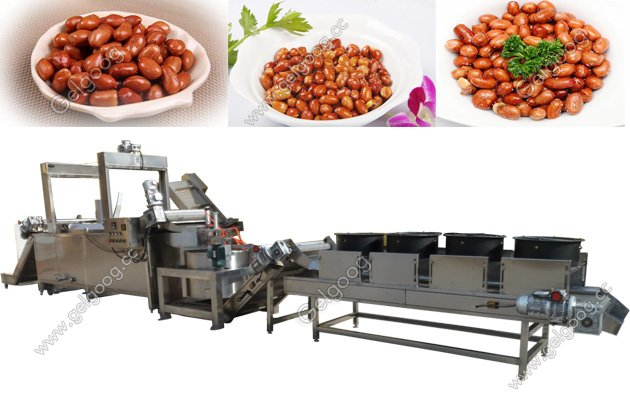 Automatic Frying Peanut Machine Sold to India