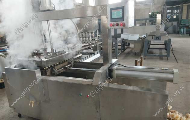 wafer ice cream cone machine for sri lanka