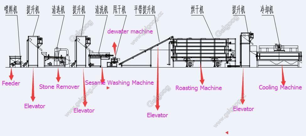 commercial sesame washing cleaning and drying machine plant with low price
