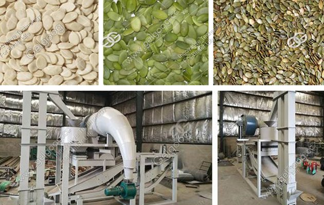 sunflower seeds processing plant manufacturer in china