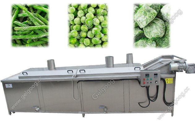 Automatic Fruit Vegetable Chips Blanching Machine