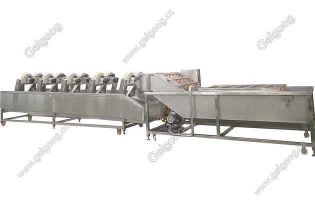 Dates Processing Line With Washing Drying