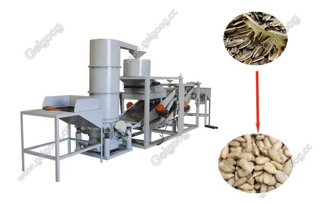how to shell sunflower seeds commercially