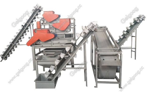 almond shelling processing plant