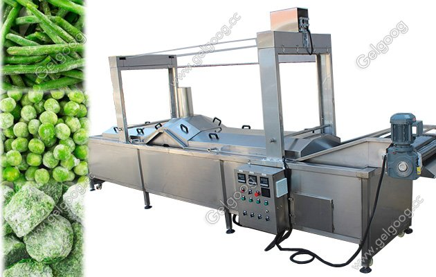 Automatic Fruit Vegetable Chips Blanching Machine price