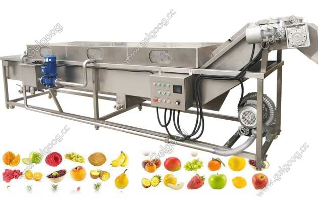 Industrial Fruit Bubble Washing Machine Manufacturer