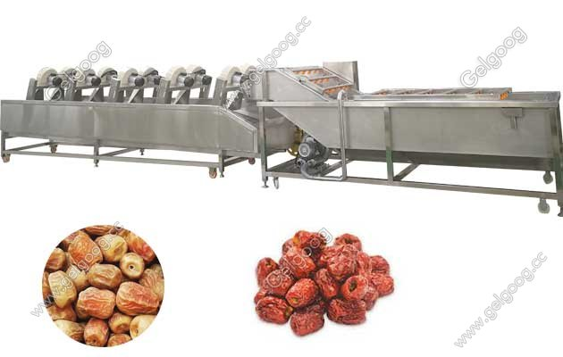 dates washing and drying line cost