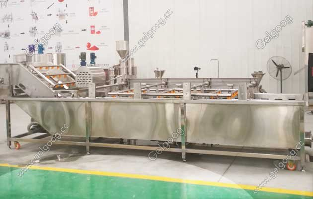 dates processing plant manufacturers