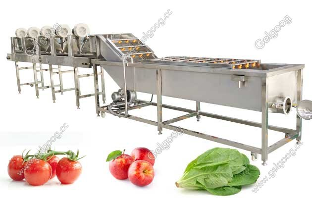 Industrial Fruit Washing And Drying Machine