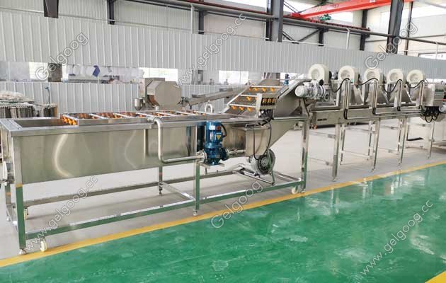 fruit washing and drying machine manufacturer