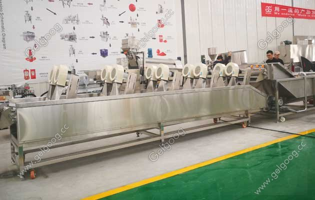 industrial fruit washing machine